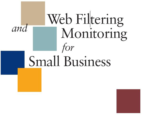 Web Filtering and Monitoring for Small Businesses